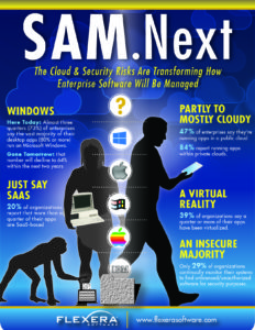 flexera2016_12_06-infographic_cloudvirtmobile_transformingsam_nov16